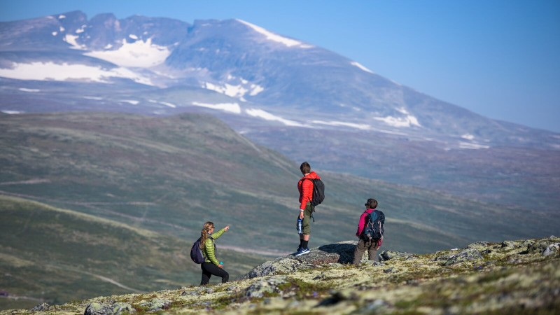 06large-Hiking_Hjerkinn_Dovre-CH_-_VisitNorway.com (1)