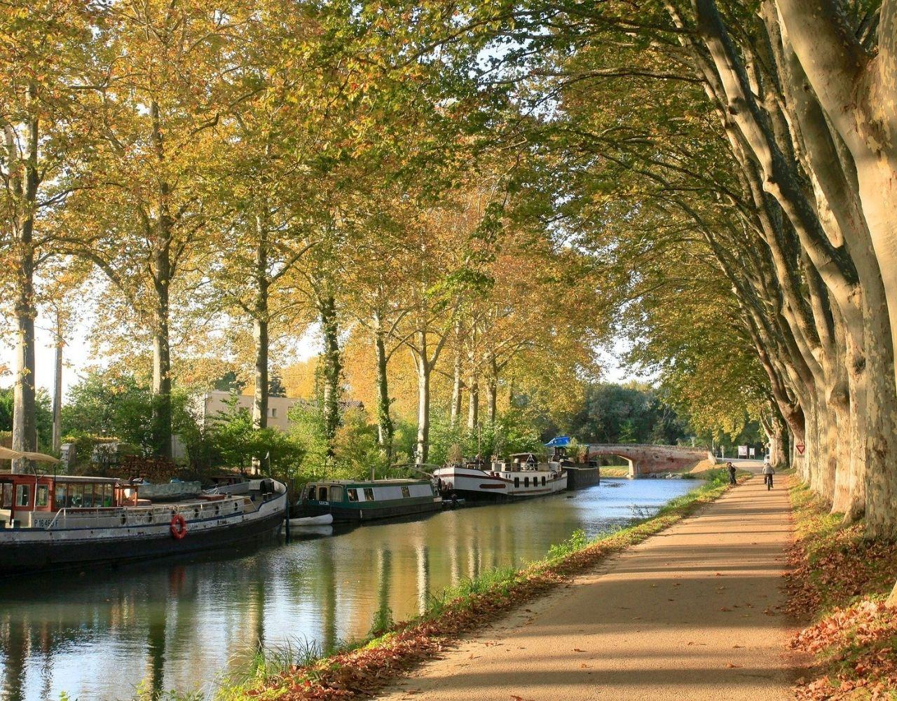 maxpulse_sykkel_Canal du midi
