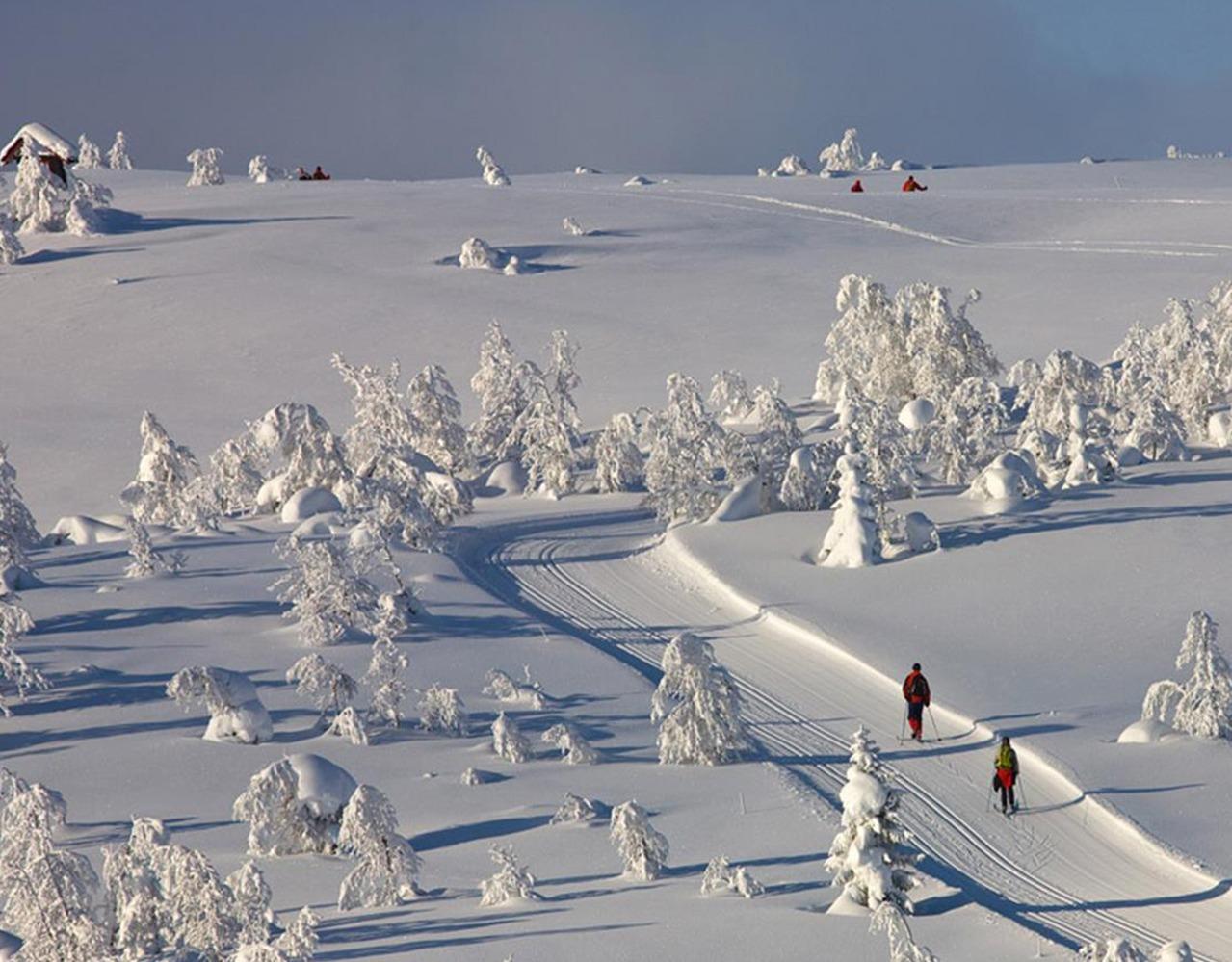 ski beito