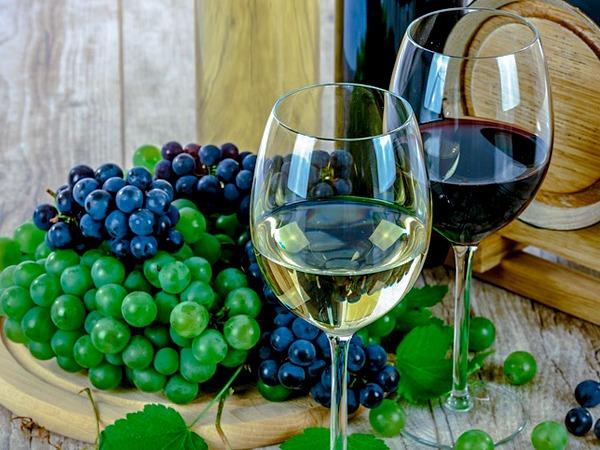 Vin og druer, mat og vin, fellestur, firmatur, expert reiser